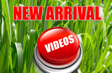 Niagara Trailers New Release Videos